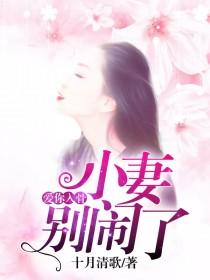 [花语书坊]十月清歌小说《爱你入骨:小妻别闹了》全本在线阅读